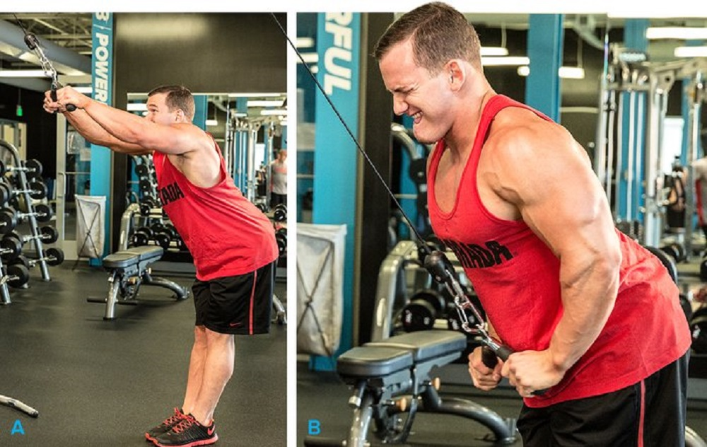 تمرين ظهر Straight-Arm Lat Pull-Down